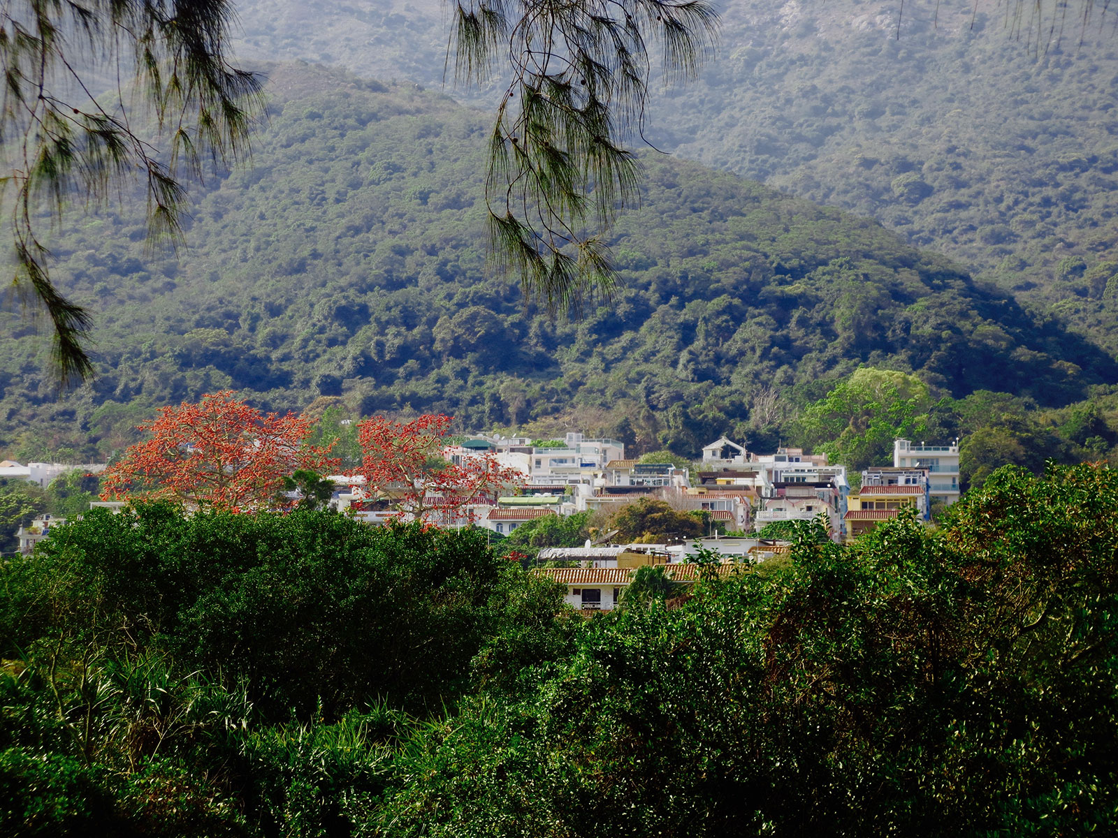 The village where I lived the last 16 years I spent in Hong Kong: Pui O, Lantau Island.